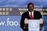 Möte i Rom till stöd för Haitis livsmedelsförsörjning