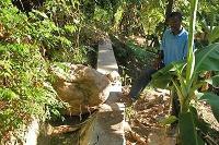 Insatser för återuppbyggnad av Haiti inleds