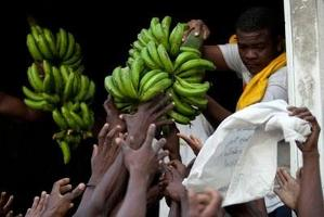 700 miljoner dollar till Haitis jordbruksplan
