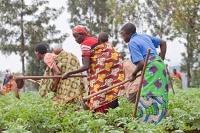 Öka jämställdheten inom jordbruket