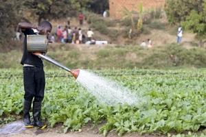 Nya lösningar för vattenförvaltningen krävs för hållbara städer