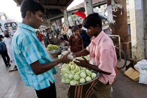 Livsmedelspriserna sjunker