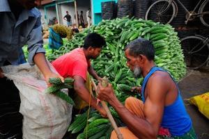 De globala livsmedelspriserna på stadig nivå