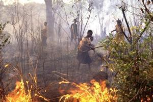 Allt fler megabränder kan bidra till klimatförändringen