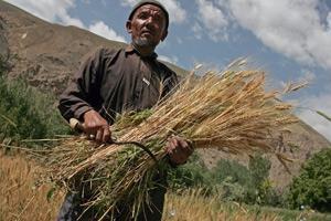 Återinför naturen till jordbruket