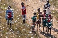 Nytt gräshoppshot i Madagaskar