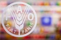 FAO Konferens och val av ny generaldirektör
