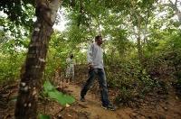 Säkra besittningsrätten av skogen