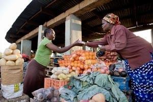 FAO:s matprisindex närmast oförändrat i augusti