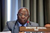 Politisk kraftsamling för Afrikas horn