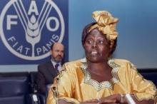 Världen har förlorat fredspristagaren Wangari Maathai