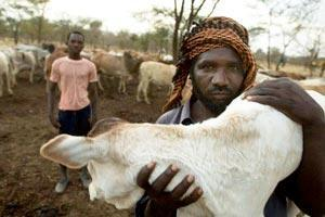 Livsmedelskris hotar i Sudan