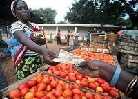 Hungerrapporten 2011: Fortsatt höga och volatila livsmedelspriser