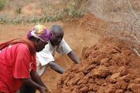Med svenskt stöd hjälper FAO kenyanska bönder i kampen mot torkan