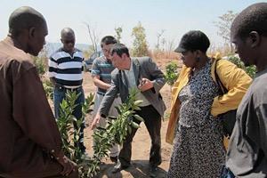 FAO utökar sitt stöd till Syd-Sydsamarbete