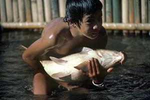 FAO och ILO gör gemensam sak mot barnarbete inom fiskerinäringen