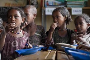 Brasilien ger stöd till lokal upphandling av livsmedel i Afrika