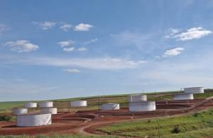 Nya riktlinjer för att hantera bioenergiutvecklingens möjligheter och avigsidor