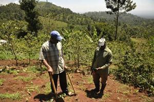 FAO hjälper Tanzania att kartlägga kol i skogsmark