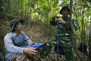 Skogen i fokus för en ny, grönare ekonomi