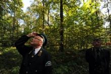 Innovationer och investeringar behövs för att modernisera det ryska skogsbruket