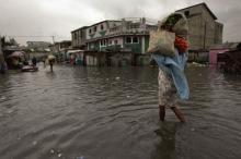 FAO och Haitis regering efterlyser 74 miljoner dollar till Haitis jordbrukssektor