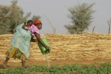 Involvera lokala lantbrukare - nyckeln till framgång vid utländska investeringar