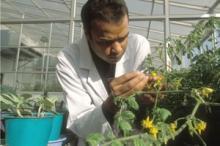 FAO efterlyser ökat fokus på lantbrukare vid jordbruksinvesteringar