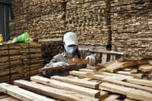 Skogsindustrin återhämtar sig något efter lågkonjunkturen