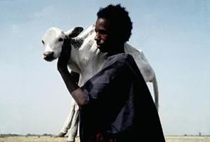 Mali i kritiskt behov av stöd inför kommande odlingssäsong