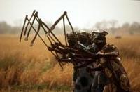 Afrikansk fond för tryggad livsmedelsförsörjning blir verklighet