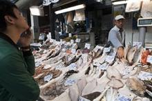 AppliFish–kunskap om fisk och havsmiljö endast ett knapptryck bort