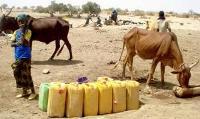 FAO varnar för bristande finansiering för insatserna i Sahel och på Afrikas horn