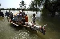 Påskyndat bistånd till Pakistans översvämningsoffer