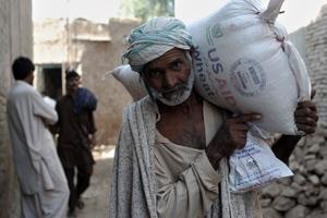 Översvämningsdrabbade Pakistan förväntas få god veteskörd
