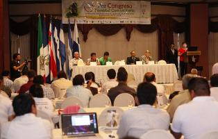 Outcome of the Pre-Congress on Community Forestry as a basis for Governance and starting point for FLEGT and REDD organized by the Mesoamerican Alliance of People and Forests (AMPB) in Honduras