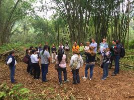 Forest Connect Global Workshop on risk management of locally controlled forest businesses