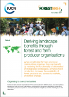 Deriving landscape benefits through forest and farm producer organisations - IUCN Forest Brief No.15