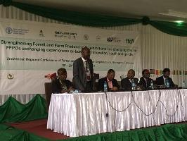 African forest and farm producer organizations outline vision for production in changing climate