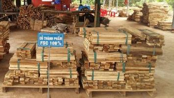 Mass mobilisation: boosting businesses and protecting forests