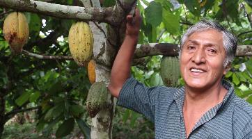 FAO helps Bolivian smallholder farmers produce sustainable world-class cocoa