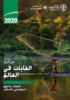 حالة الغابات في العالم 2020