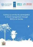 Scaling up community participation in forest management through REDD+ in Zambia