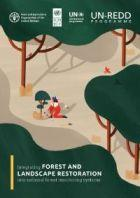 Integrating forest and landscape restoration into national forest monitoring systems