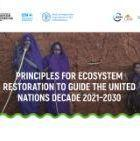Principles for ecosystem restoration to guide the United Nations Decade 2021–2030