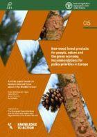 Non-wood forest products for people, nature and the green economy