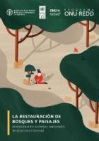 La restauración de bosques y paisajes integrada a los sistemas nacionales de monitoreo forestal