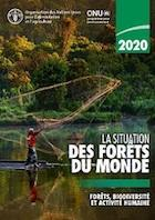 La situation des forêts du monde 2020