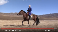 Protecting Mongolia's forests