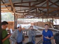 Guatemala, Honduras y FAO se unen para combatir la tala ilegal
